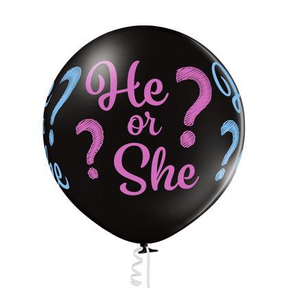 He or She? #412